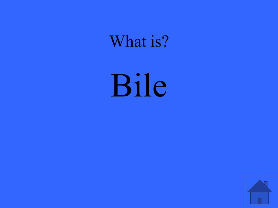 What is Bile