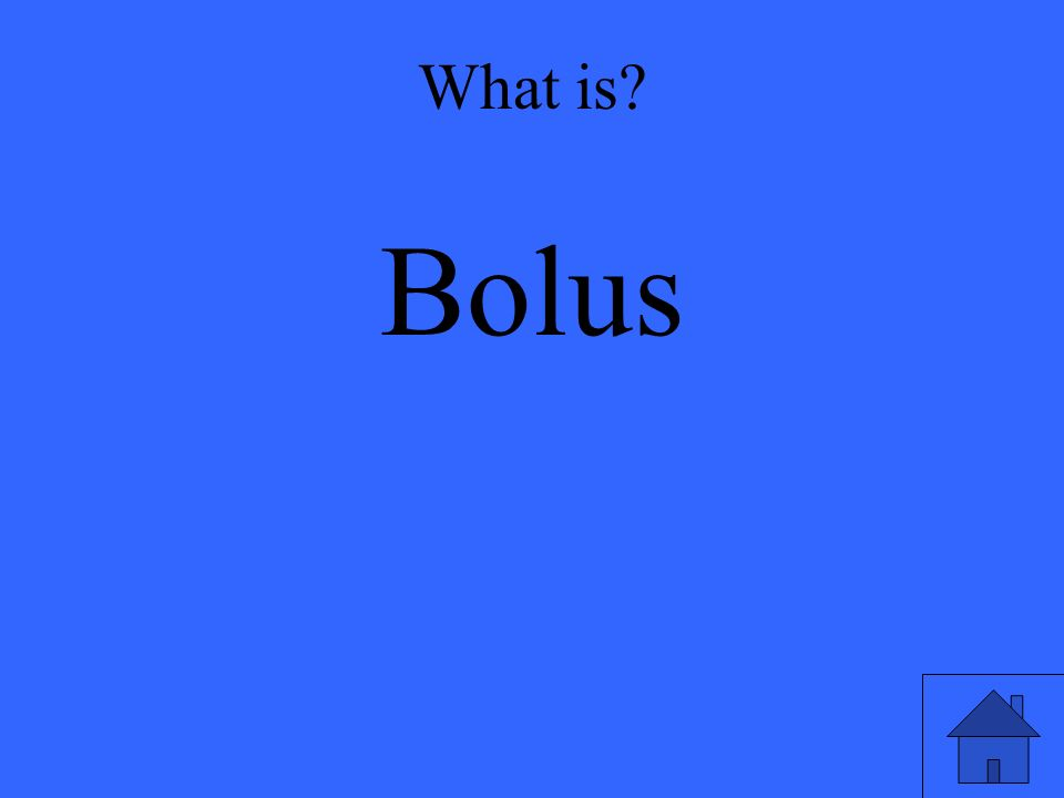What is Bolus