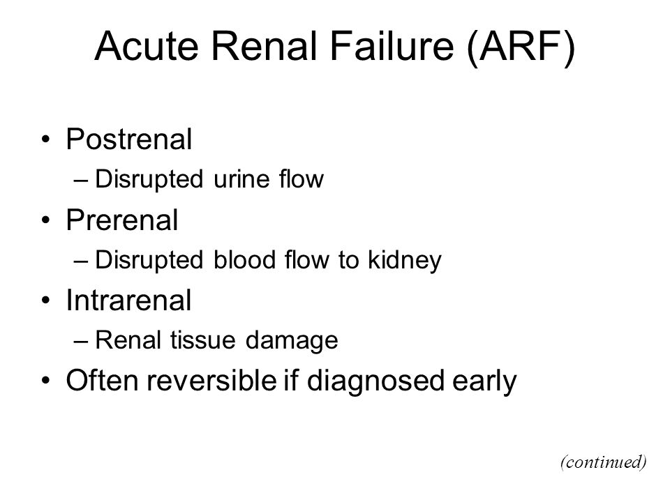 Acute Renal Failure (ARF) Postrenal –Disrupted urine flow Prerenal –Disrupted blood flow to kidney Intrarenal –Renal tissue damage Often reversible if