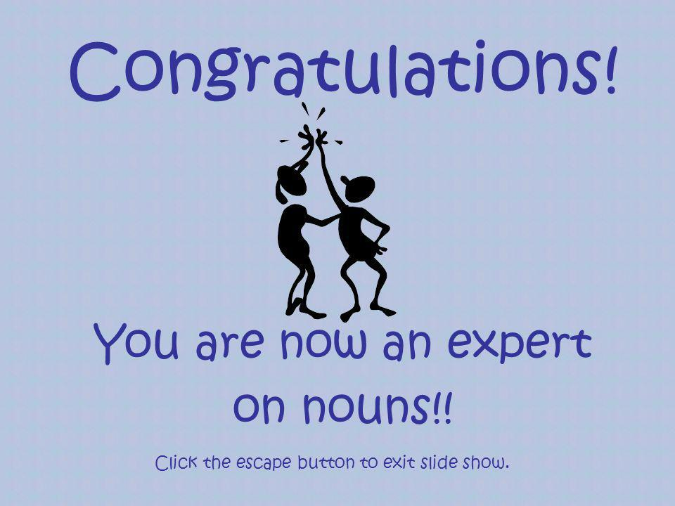 Congratulations! You are now an expert on nouns!! Click the escape button to exit slide show.
