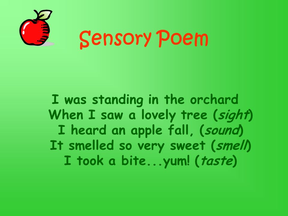 Sensory Poem I was standing in the orchard When I saw a lovely tree (sight) I heard an apple fall, (sound) It smelled so very sweet (smell) I took a bite...yum.