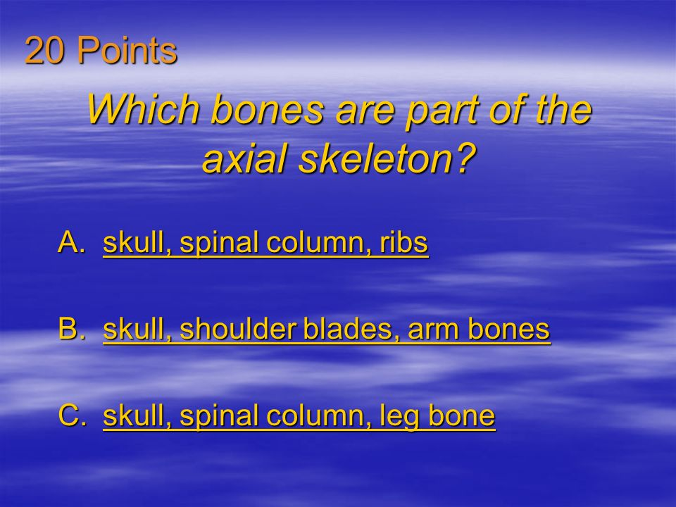 The marrow of bones produces A.red blood cells. red blood cells.red blood cells. B.tendons. tendons. C.compact bone. compact bone.compact bone. 10 Poi
