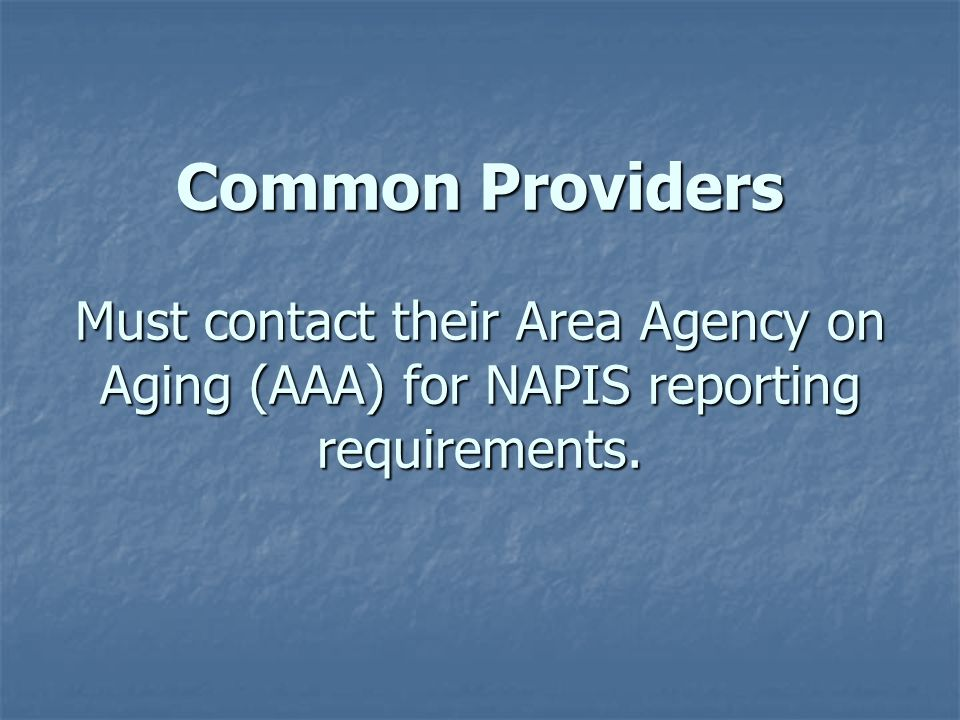 Non-Common Title XX Providers Must report the number of the other NSIP eligible individuals and the following demographic information to their DADS contract managers.