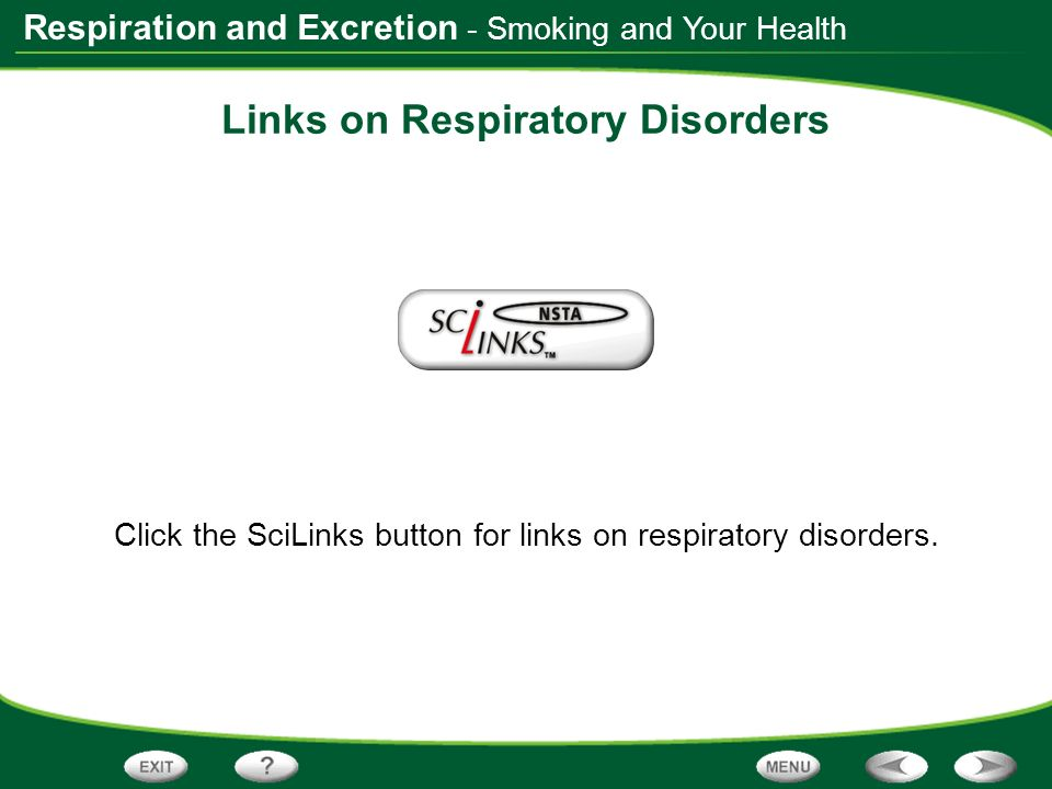 Respiration and Excretion Links on Respiratory Disorders Click the SciLinks button for links on respiratory disorders. - Smoking and Your Health