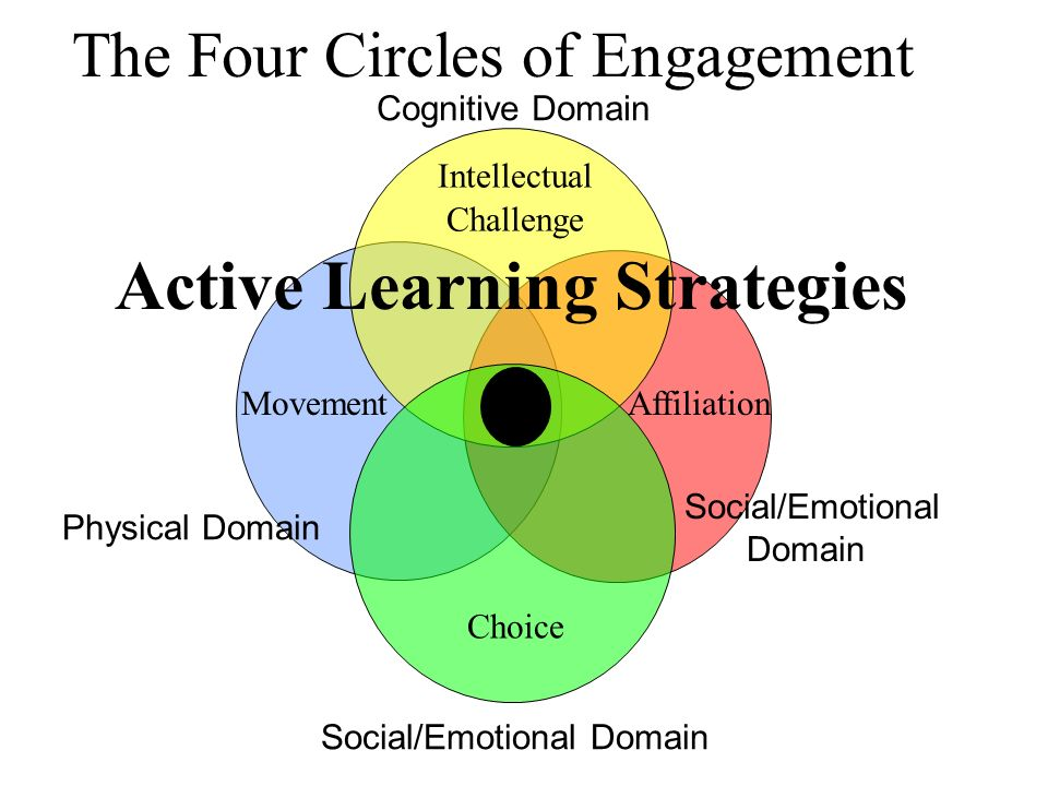 The Four Circles of Engagement Physical Domain Movement Social/Emotional Domain Affiliation Cognitive Domain Intellectual Challenge Active Learning Strategies Social/Emotional Domain Choice