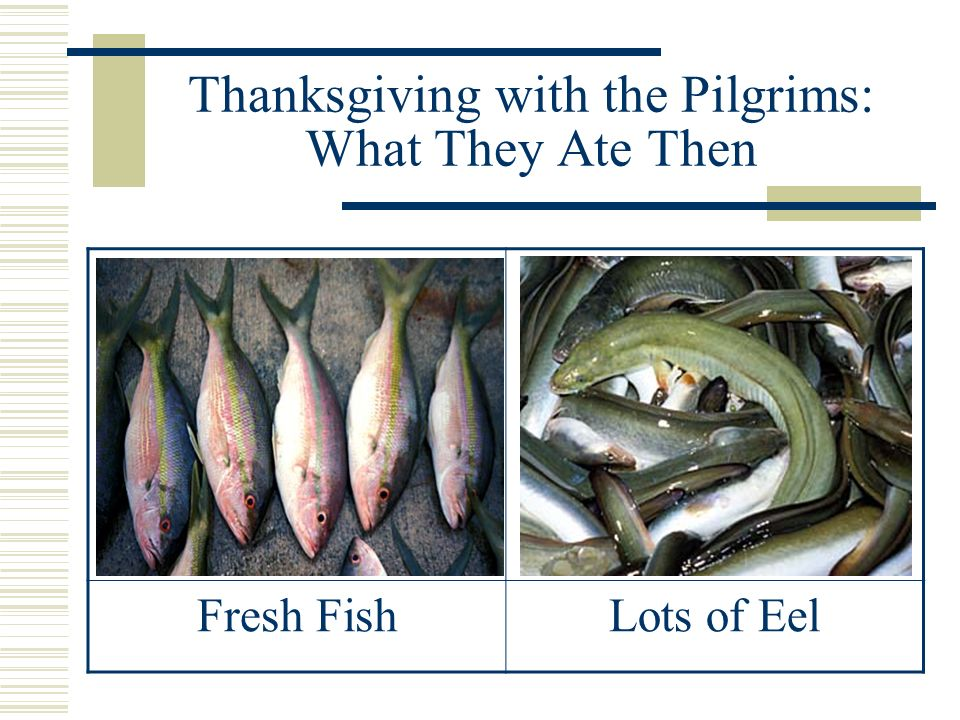Thanksgiving with the Pilgrims: What They Ate Then Seafood: clams, mussels, lobsters, oysters