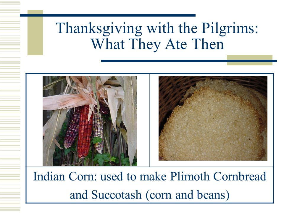 Thanksgiving with the Pilgrims: What They Ate Then Vegetables: squash, pumpkin, beans, peas
