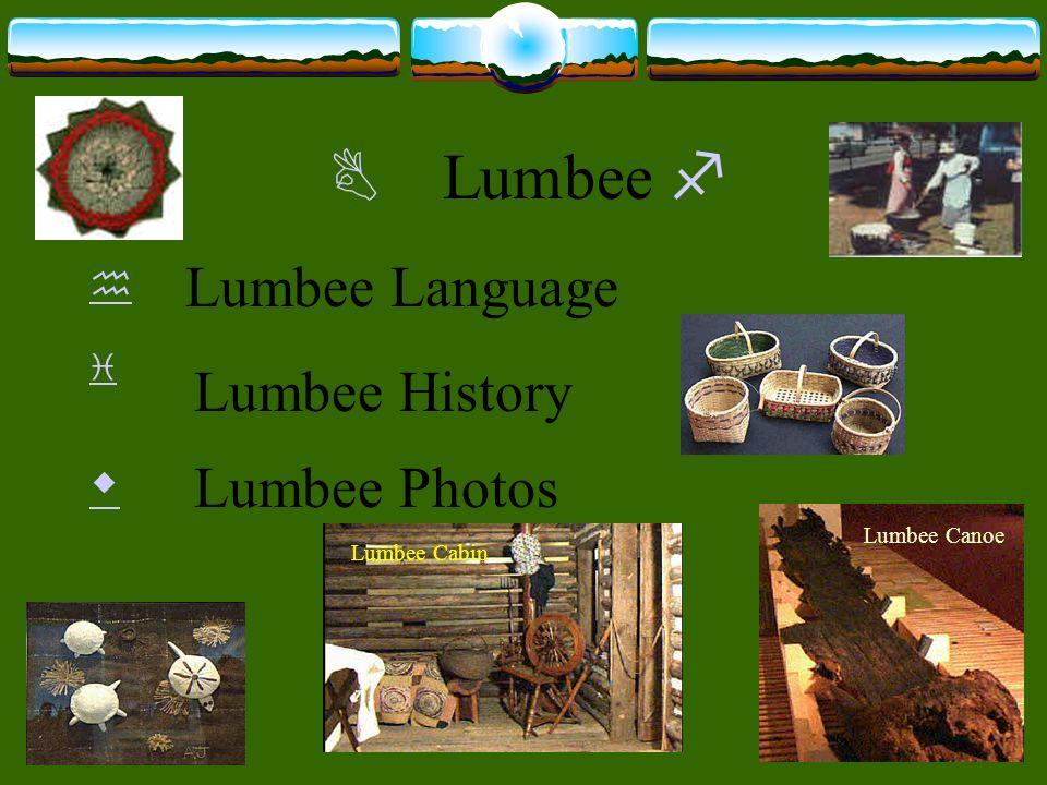 Lumbee Lumbee Language Lumbee Canoe Lumbee Cabin Lumbee History Lumbee Photos