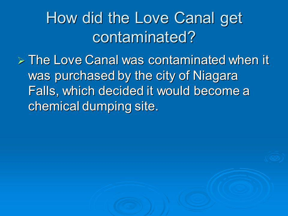 How did the people realize the love canal was contaminated.