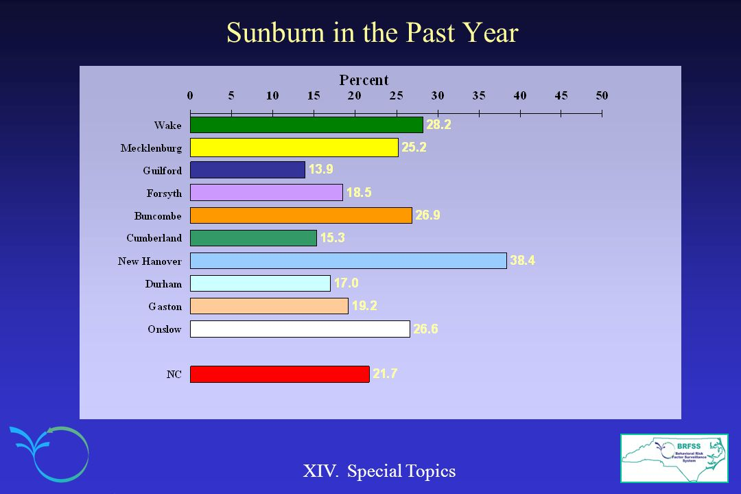 Sunburn in the Past Year XIV. Special Topics