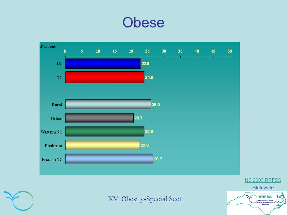 NC 2003 BRFSS Statewide Obese XV. Obesity-Special Sect.