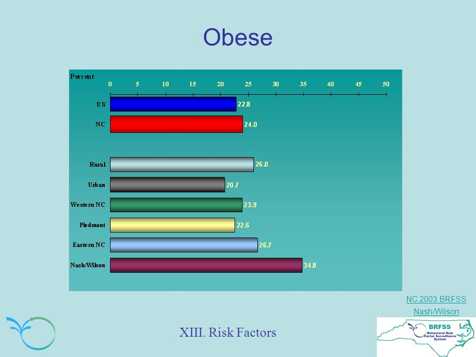 NC 2003 BRFSS Nash/Wilson Obese XIII. Risk Factors