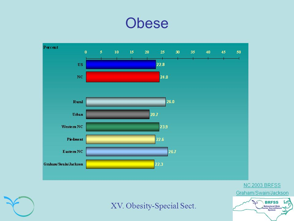 NC 2003 BRFSS Graham/Swain/Jackson Obese XV. Obesity-Special Sect.