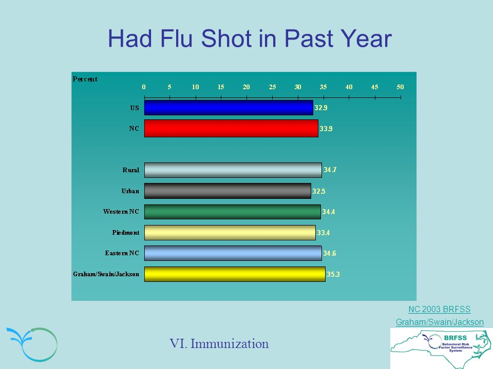 NC 2003 BRFSS Graham/Swain/Jackson Had Flu Shot in Past Year VI. Immunization