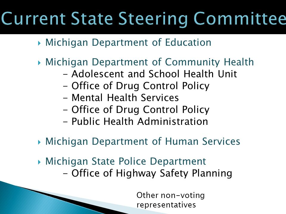 Michigan Department of Education Michigan Department of Community Health - Adolescent and School Health Unit - Office of Drug Control Policy - Mental Health Services - Office of Drug Control Policy - Public Health Administration Michigan Department of Human Services Michigan State Police Department - Office of Highway Safety Planning Other non-voting representatives