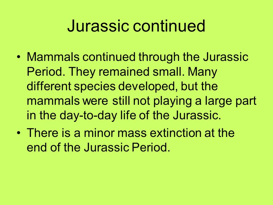 Jurassic continued Mammals continued through the Jurassic Period. They remained small. Many different species developed, but the mammals were still no