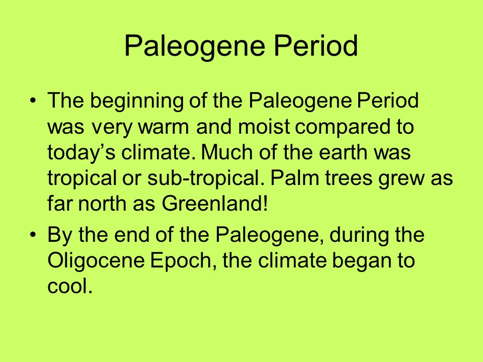 Paleogene Period The beginning of the Paleogene Period was very warm and moist compared to todays climate. Much of the earth was tropical or sub-tropi