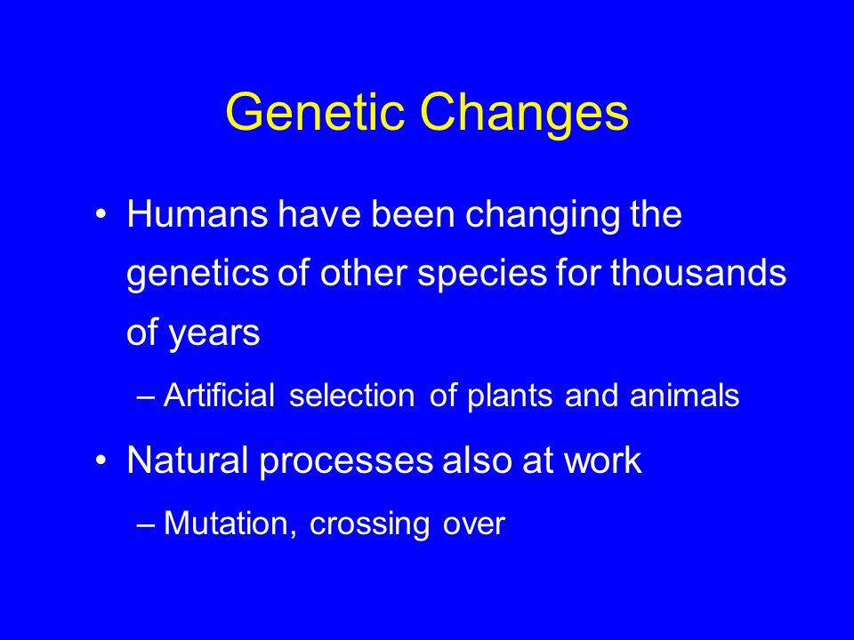 Genetic Changes Humans have been changing the genetics of other species for thousands of years –Artificial selection of plants and animals Natural pro