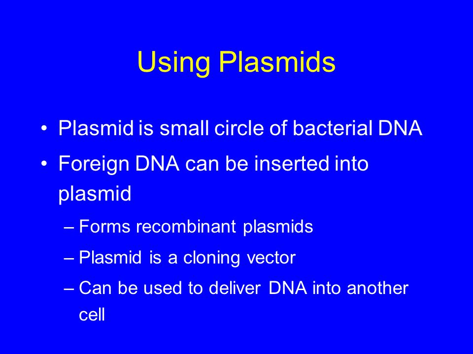 Using Plasmids Plasmid is small circle of bacterial DNA Foreign DNA can be inserted into plasmid –Forms recombinant plasmids –Plasmid is a cloning vec