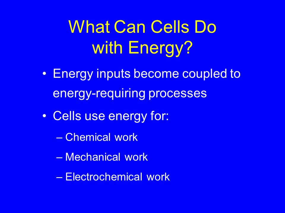 What Can Cells Do with Energy? Energy inputs become coupled to energy-requiring processes Cells use energy for: –Chemical work –Mechanical work –Elect