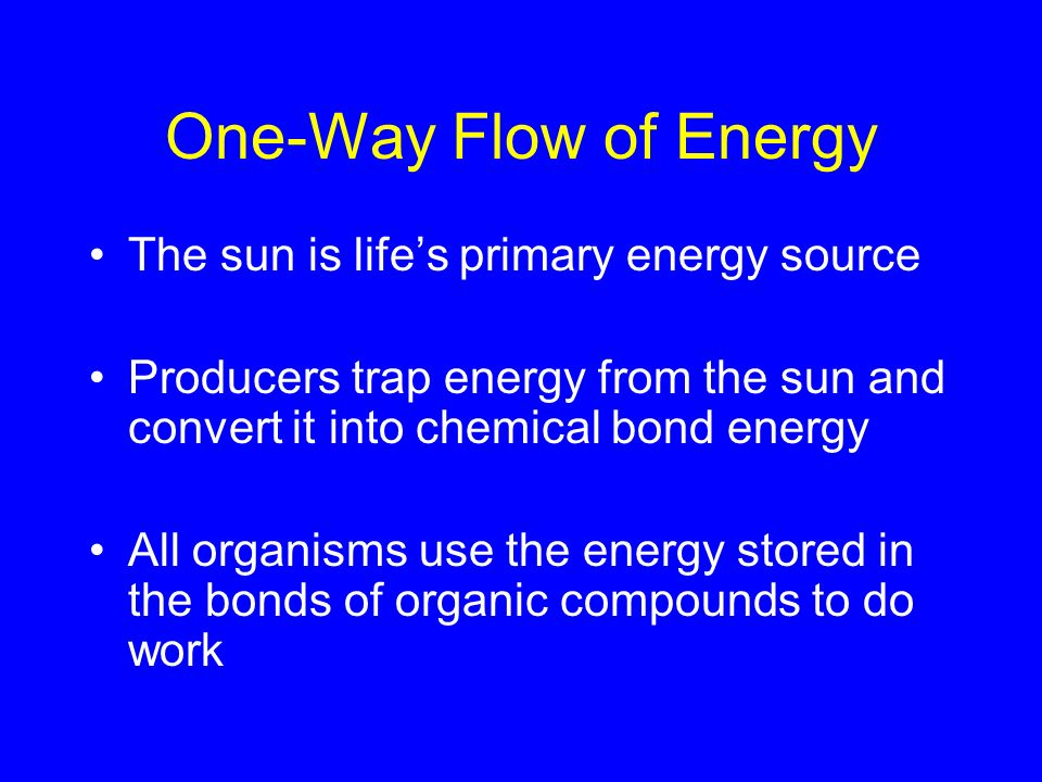 One-Way Flow of Energy The sun is lifes primary energy source Producers trap energy from the sun and convert it into chemical bond energy All organism