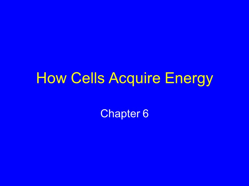 How Cells Acquire Energy Chapter 6