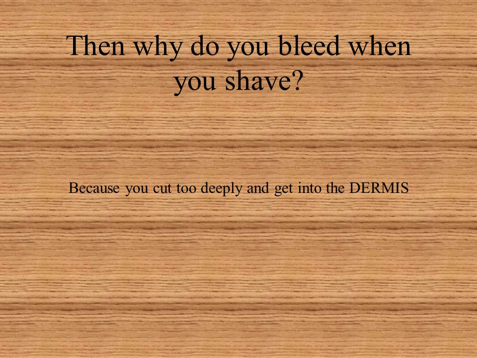 Why can we shave (face/legs) and not bleed? The epidermis is AVASCULAR, meaning it has no blood supply of its own. Most cells produce keratin (tough,