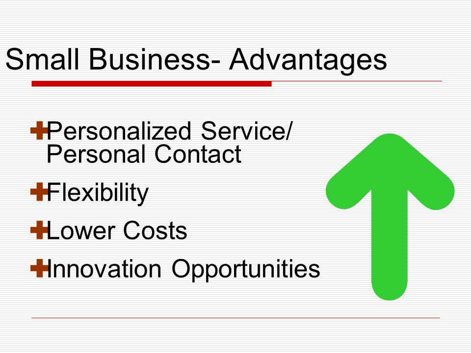 Small Business- Advantages Personalized Service/ Personal Contact Flexibility Lower Costs Innovation Opportunities