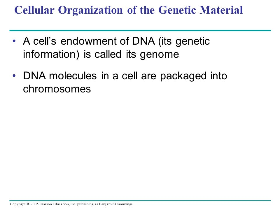 Copyright © 2005 Pearson Education, Inc. publishing as Benjamin Cummings Cellular Organization of the Genetic Material A cells endowment of DNA (its g