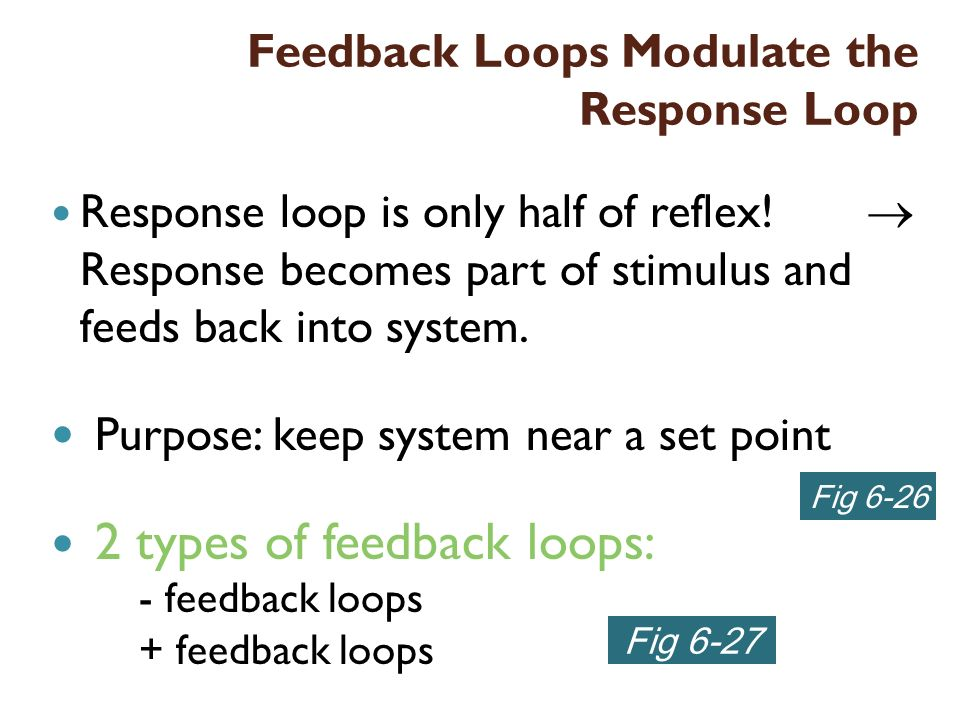 Feedback Loops Modulate the Response Loop Response loop is only half of reflex! Response becomes part of stimulus and feeds back into system. Purpose: