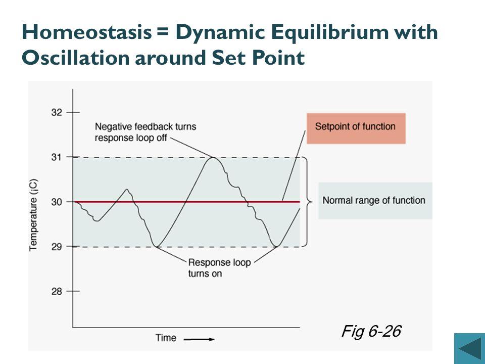 Homeostasis = Dynamic Equilibrium with Oscillation around Set Point Fig 6-26