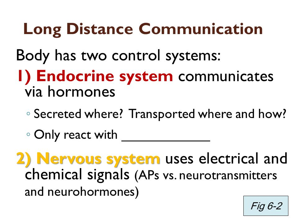 Long Distance Communication Body has two control systems: 1) Endocrine system communicates via hormones Secreted where? Transported where and how? Onl