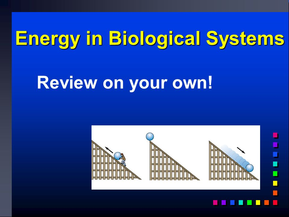 Energy in Biological Systems Review on your own!