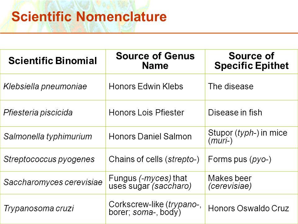 Copyright © 2006 Pearson Education, Inc., publishing as Benjamin Cummings Scientific Binomial Source of Genus Name Source of Specific Epithet Klebsiel