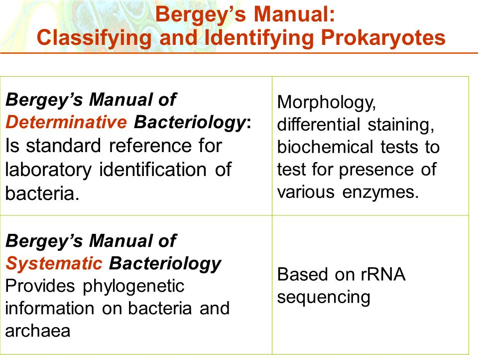 Copyright © 2006 Pearson Education, Inc., publishing as Benjamin Cummings Bergeys Manual of Determinative Bacteriology: Is standard reference for labo