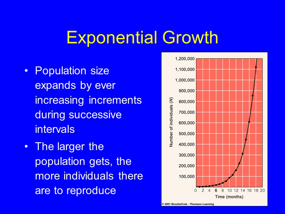 Exponential Growth Population size expands by ever increasing increments during successive intervals The larger the population gets, the more individu