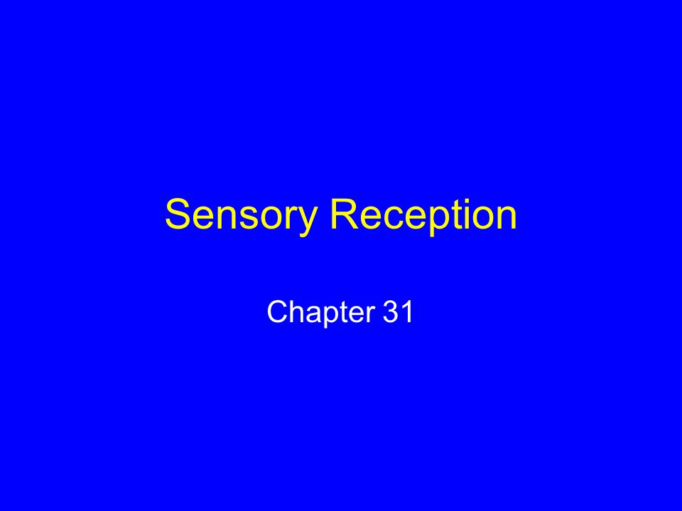 Sensation and Perception Sensation is conscious awareness of a stimulus Perception is understanding what a sensation means