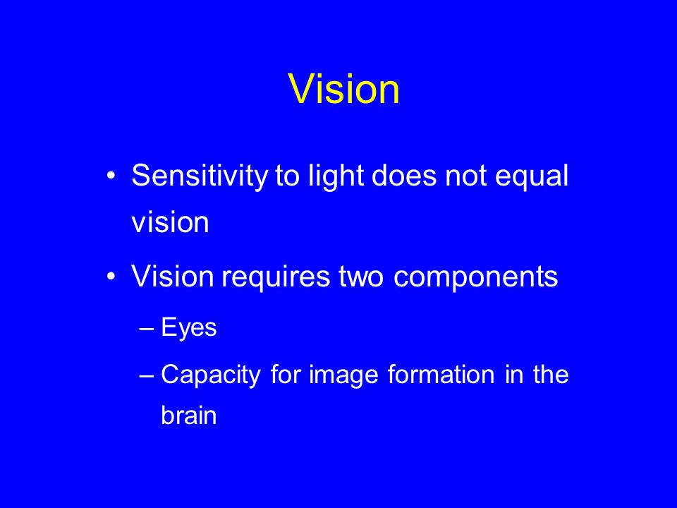 Vision Sensitivity to light does not equal vision Vision requires two components –Eyes –Capacity for image formation in the brain