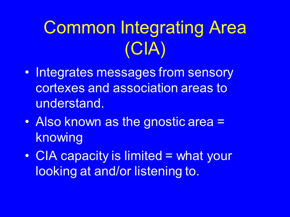 Common Integrating Area (CIA) Integrates messages from sensory cortexes and association areas to understand. Also known as the gnostic area = knowing