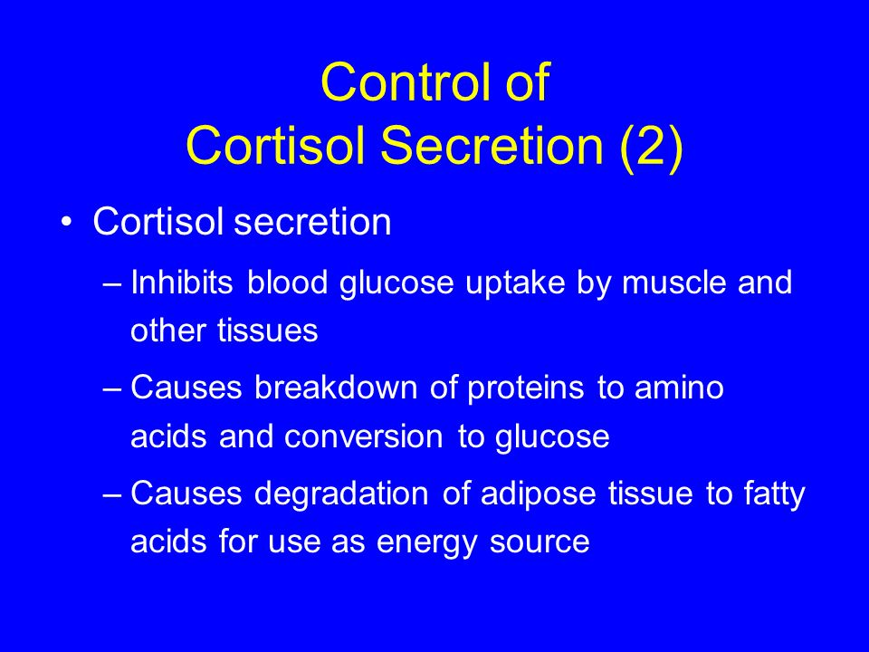 Control of Cortisol Secretion (2) Cortisol secretion –Inhibits blood glucose uptake by muscle and other tissues –Causes breakdown of proteins to amino
