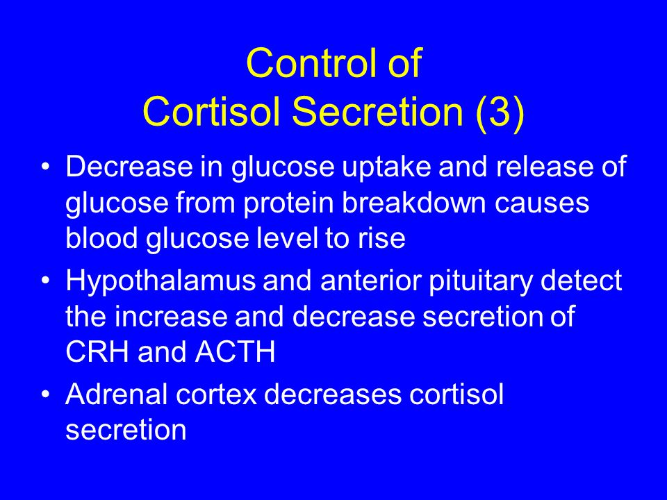 Control of Cortisol Secretion (3) Decrease in glucose uptake and release of glucose from protein breakdown causes blood glucose level to rise Hypothal