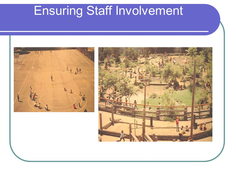 Ensuring Staff Involvement