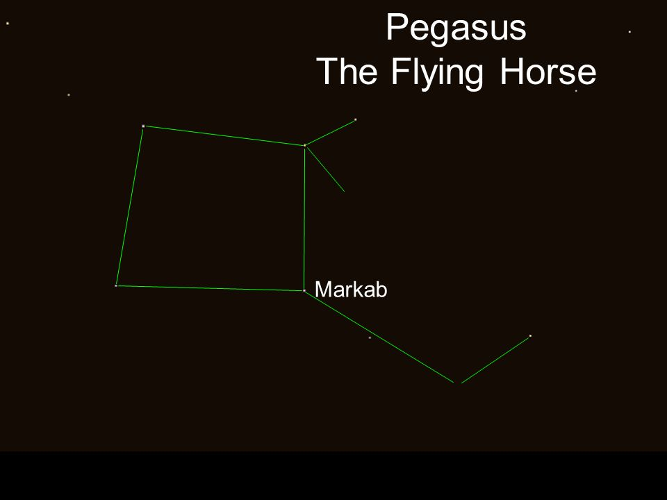Pegasus The Flying Horse Markab