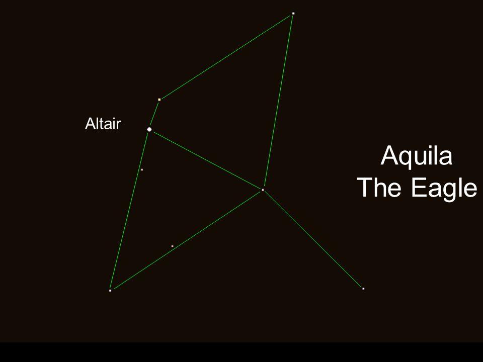 Aquila The Eagle Altair