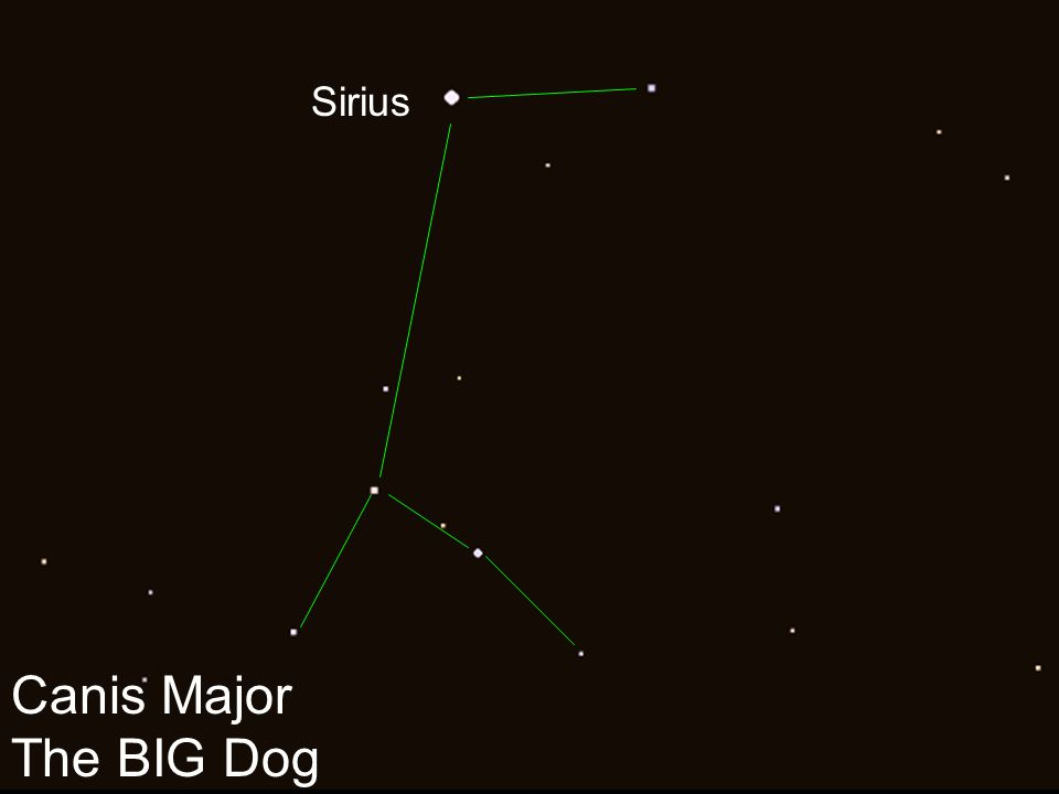 Canis Major The BIG Dog Sirius