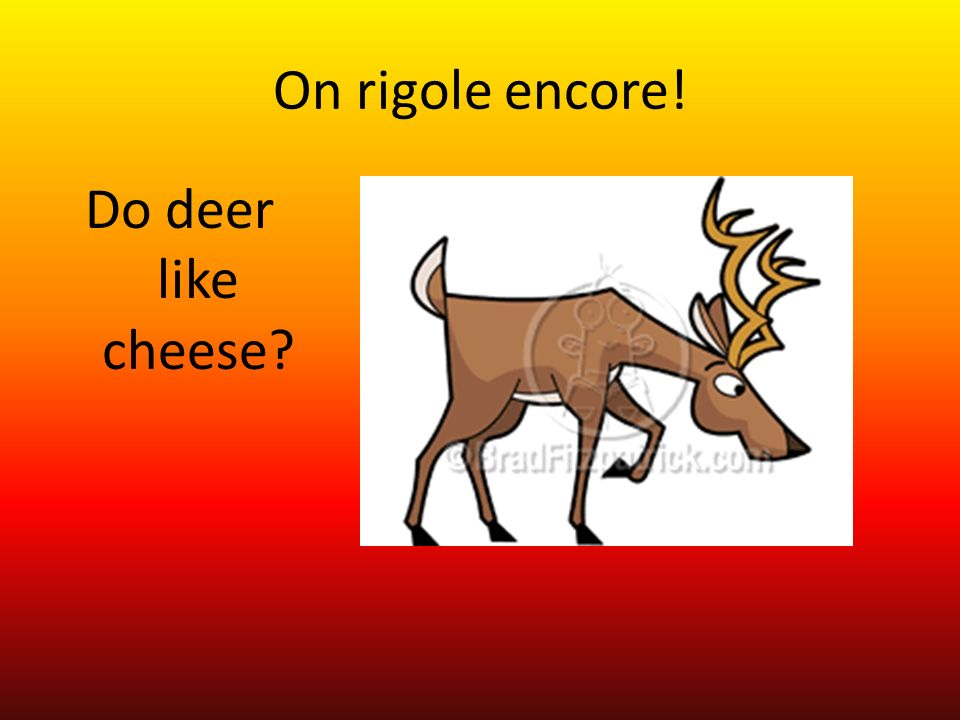 On rigole encore! Do deer like cheese