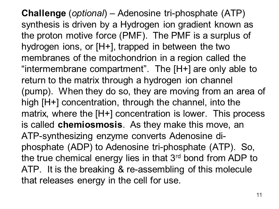 Challenge (optional) – Adenosine tri-phosphate (ATP) synthesis is driven by a Hydrogen ion gradient known as the proton motive force (PMF).
