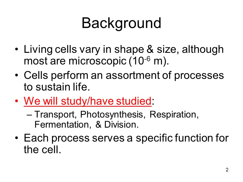 Background Living cells vary in shape & size, although most are microscopic (10 -6 m).