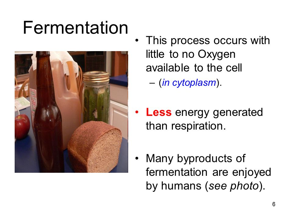 Fermentation This process occurs with little to no Oxygen available to the cell –(in cytoplasm).