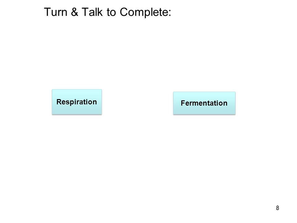 Turn & Talk to Complete: 8 Respiration Fermentation